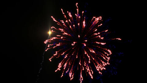 Colorful fireworks with heart in final at the blac Animation