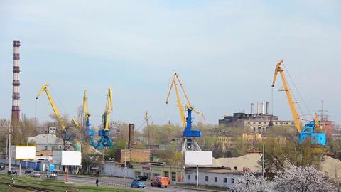 River port Live Action