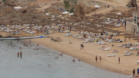 Beach in Egypt Live Action