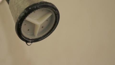 Shower Head Dripping Close Up Tilt stock footage