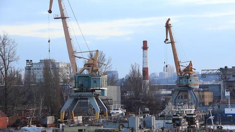 Harbour cranes Live Action
