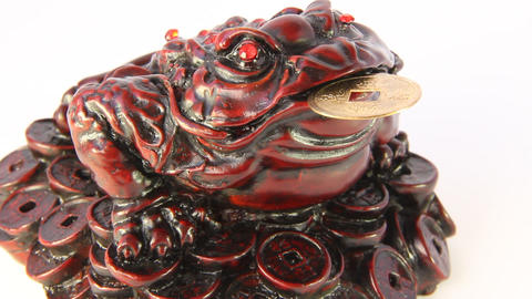 Feng Shui. Frog symbolizing riches and prosperity Live Action