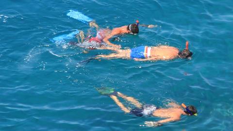 Three snorkelers on a blue sea Footage