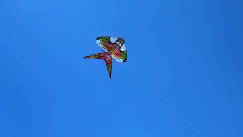 Kite Footage