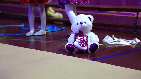 Polar Bear In School Of Gymnastics stock footage