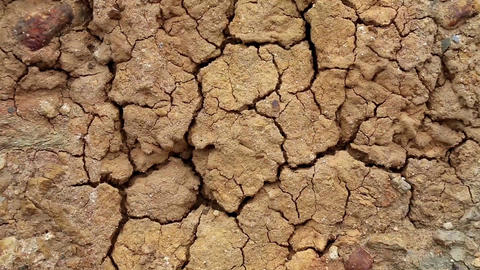 Desert. Yellow soil with cracks Footage