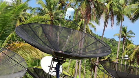 Satellite dishes amongst palm trees on the Koh-Chang island, Thailand Footage