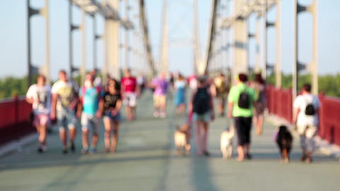 Anonymous people and dogs on the bridge Footage