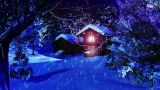 Christmas Snowy Scene Dolly 05 Snowing stock footage