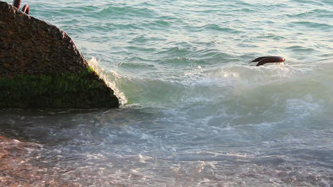 Sea waves on the shore Stock Video Footage