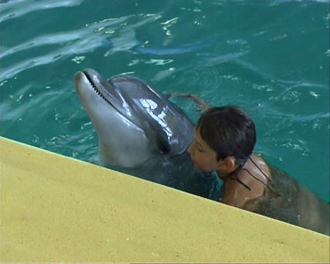 boy with dolphin 01 Stock Video Footage