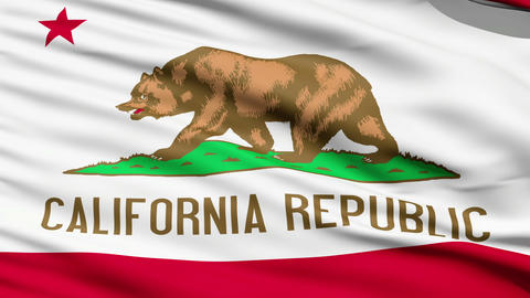 Waving Flag Of The US State Of California Stock Video Footage