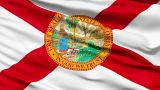 Waving Flag Of The US State Of Florida stock footage