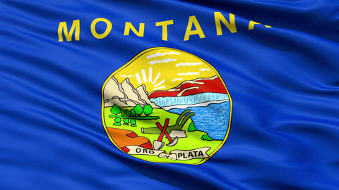 Waving Flag Of The US State of Montana Animation