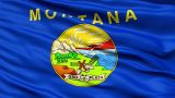 Waving Flag Of The US State Of Montana stock footage