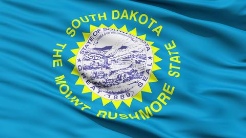 Close Up Waving National Flag of South Dakota Animation