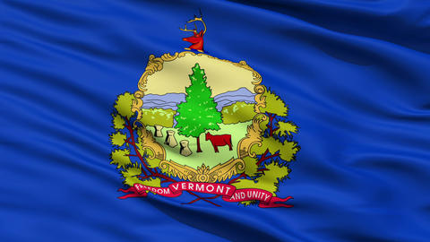 Close Up Waving National Flag of Vermont Animation