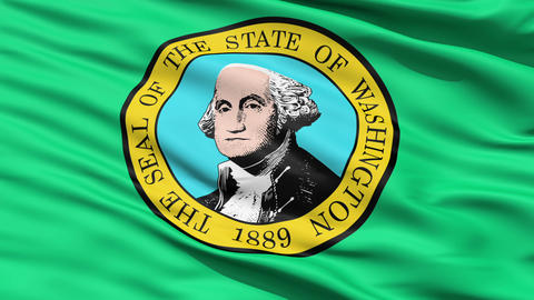 Waving Flag Of State Of Washington Stock Video Footage