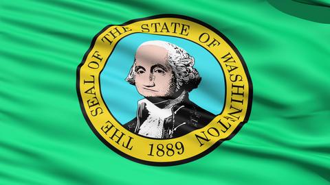 Waving Flag Of State Of Washington Stock Video Footage
