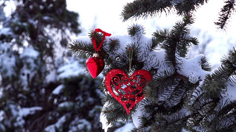 Spruce Branch With Snow And Hearts stock footage