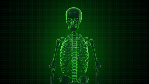 Human Skeleton in Sci fi green interface Footage