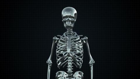 Metal Cyber Human Skeleton Silver Footage