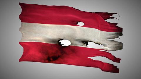 Austria perforated, burned, grunge waving flag loo Footage