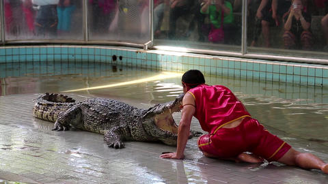 Crocodile show in Pattaya, Thailand Live Action