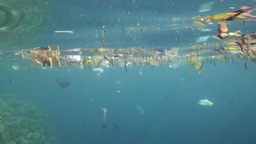Plastic Bags And Other Garbage Floating Underwater stock footage