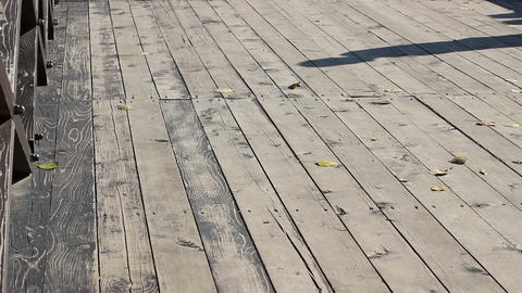 Shaddow Walking On Wooden Bridge stock footage