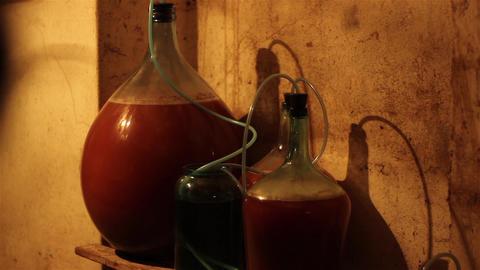 Wine Fermentation Footage