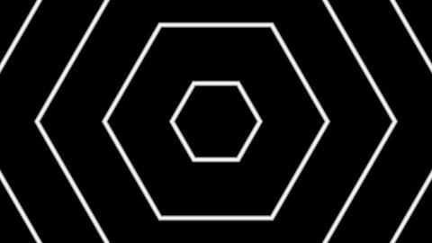 white line hexagon with alpha matte Animation