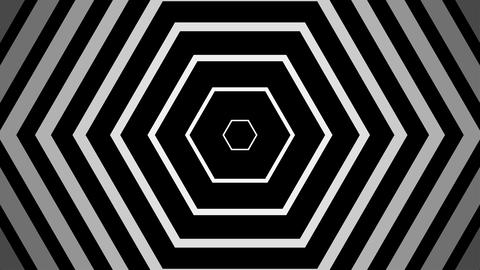 white hexagonal simple with alpha matte Animation