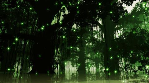 4K Mysterious Deep Jungle Fireflies in Water Stock Video Footage