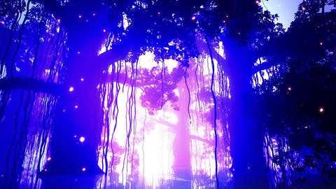 4 K Mysterious Deep Jungle Fireflies in Water 4 Stock Video Footage