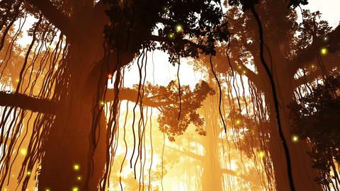 4 K Mysterious Deep Jungle Fireflies in Water 1 Stock Video Footage