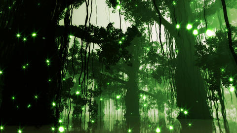 4 K Mysterious Deep Jungle Fireflies in Water at N Stock Video Footage
