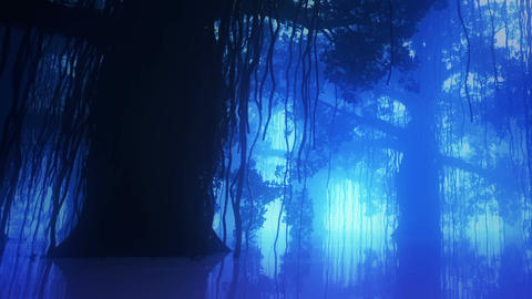 Mysterious Deep Jungle in Water at Night 11 Stock Video Footage