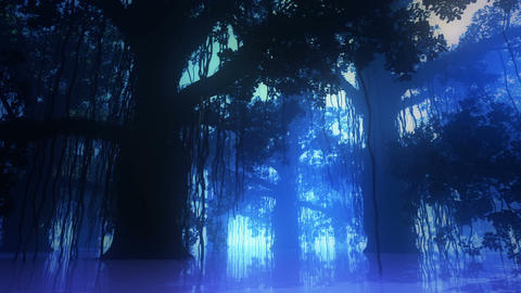 Mysterious Deep Jungle in Water at Night 2 Stock Video Footage