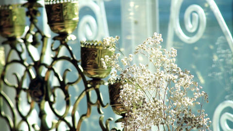 White flowers in a vase Stock Video Footage