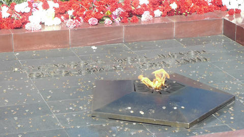 Laying down flowers to Unknown Soldier of World Wa Footage