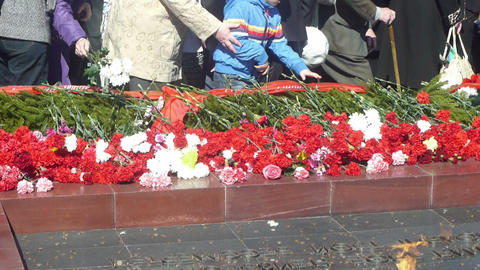 Laying down flowers to Unknown Soldier of World Wa Stock Video Footage