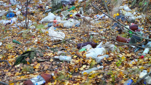 Garbage among autumn leaves in forest Footage