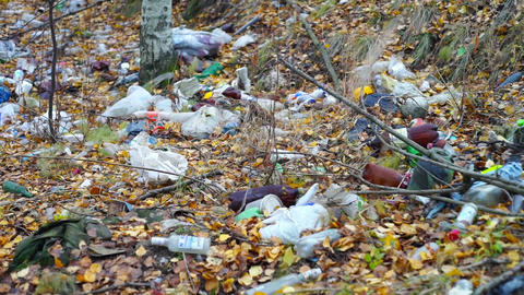Garbage among autumn leaves in forest Stock Video Footage