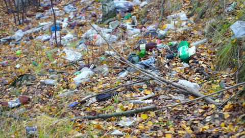 Bottles, plastic bags and other garbage in forest Stock Video Footage