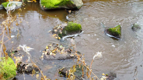 Rocks and autumn leaves in narrow river Stock Video Footage