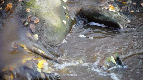 Fast river flow with bubbles and autumn leaves Stock Video Footage