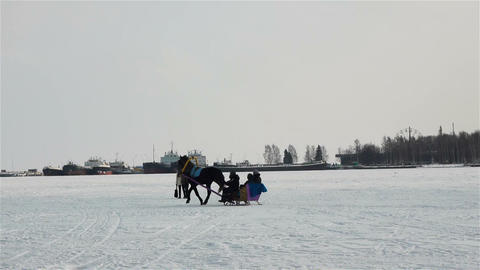 Horse and sledge Footage