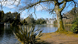 Johnstown Castle Stock Video Footage
