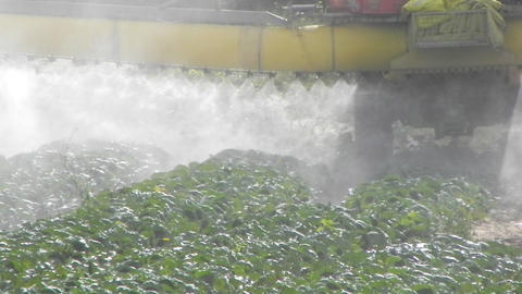 agriculture toxic tractor spraying pesticides crops... Stock Video Footage
